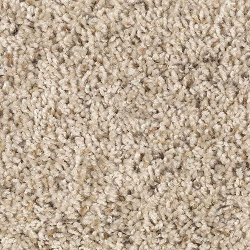 Coastal Cheer Summer Beige 507