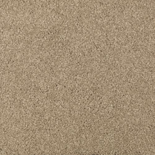 Absolute Elegance II Brushed Suede 511