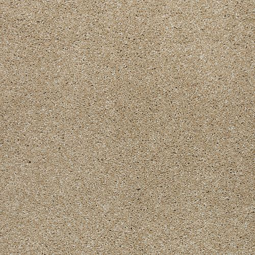 Natural Refinement II Sand Dollar 517