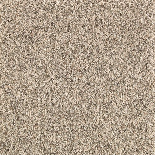 Rustic Splendor Almond Wash 564