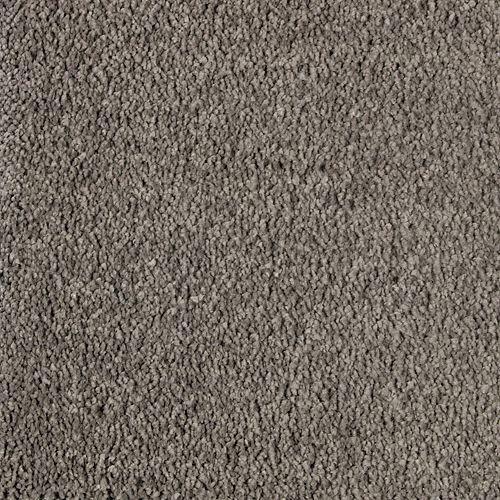 Opulent Appeal Opulent Grey 545
