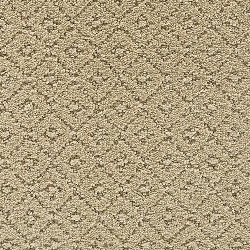 Remarkable Elegance Lambs Wool          505
