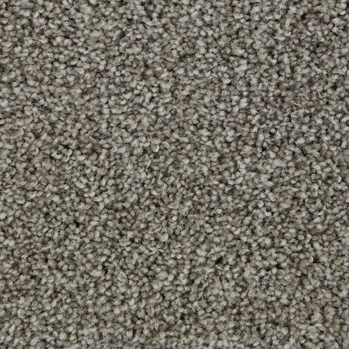Polished Shades II Shadow Taupe 947