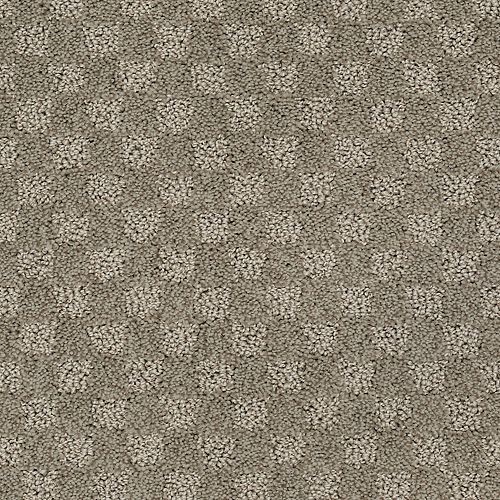 Classical Delight Noveaux Taupe 509