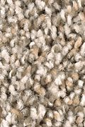Mohawk Trailblazer - Shadow Beige Carpet