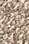 Mohawk Trailblazer - Satin Glow Carpet