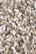 Mohawk Trailblazer - First Frost Carpet
