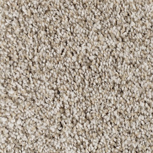 Natural Decor I Poised Taupe 746