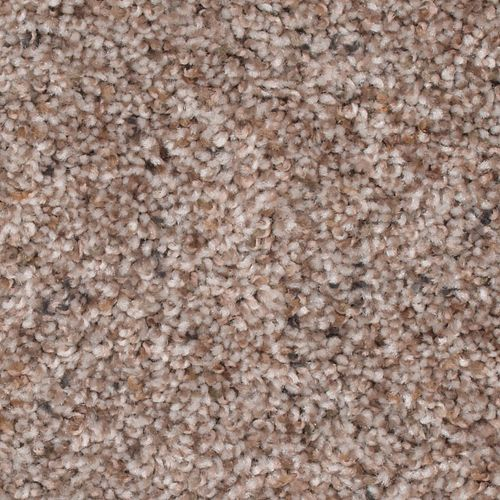 Stylish Terrain I Beige Twill 512
