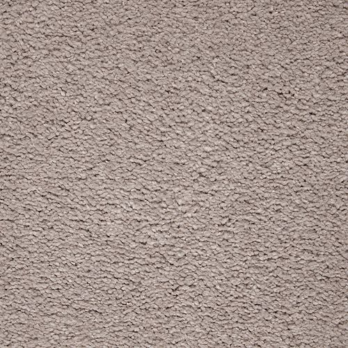 Pure Imagery Perfect Taupe 506
