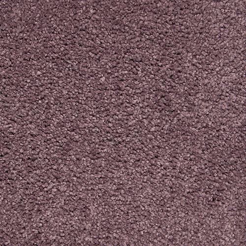 Pure Comfort Winter Amethyst 521