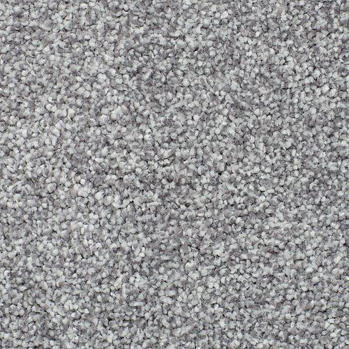 Soft Tradition I Classical 955