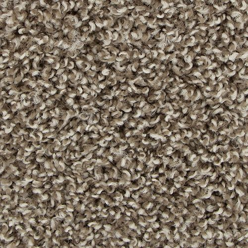 Guardian Taupe Whisper 869