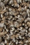 Mohawk Color Fusion II - Driftwood Carpet