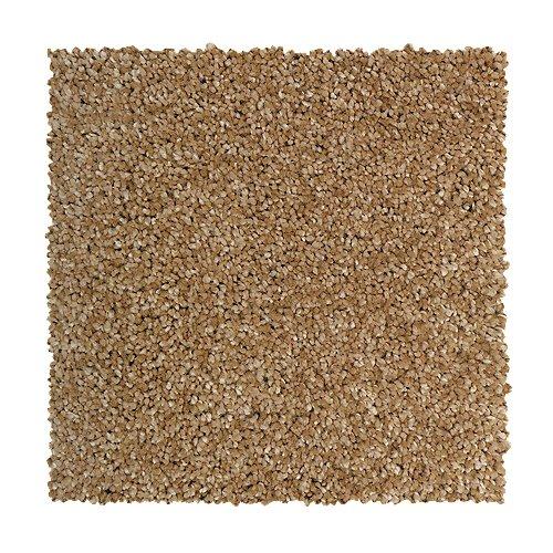 Prestige Beauty in Sea Coral - Carpet by Mohawk Flooring