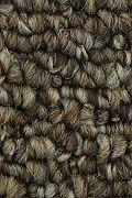 Mohawk True Amazement - Copper Tones Carpet