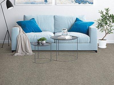 Room Scene of Placid Reflection - Carpet by Mohawk Flooring