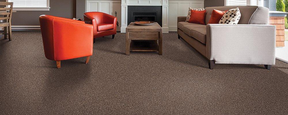 Room Scene of True Harmony - Carpet by Mohawk Flooring