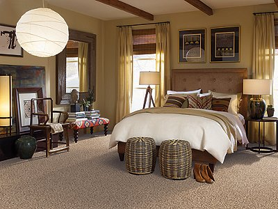 Room Scene of Palmetto Point Fleck - Carpet by Mohawk Flooring