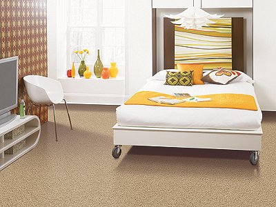 Room Scene of Laurel Ridge - Carpet by Mohawk Flooring