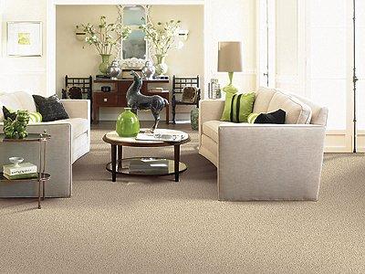 Room Scene of Vibrant Approach - Carpet by Mohawk Flooring