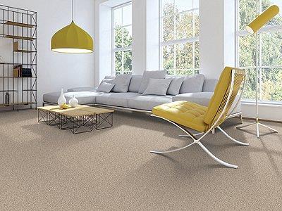 Room Scene of Absolute Elegance I - Carpet by Mohawk Flooring