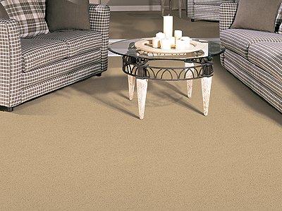Room Scene of Overdrive - Carpet by Mohawk Flooring