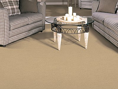 Room Scene of Burnout - Carpet by Mohawk Flooring