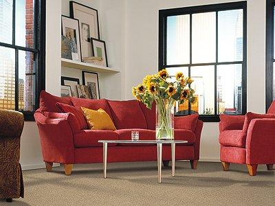 Room Scene of Casual Comfort - Carpet by Mohawk Flooring