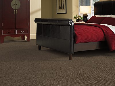 Room Scene of Soothing Manor - Carpet by Mohawk Flooring