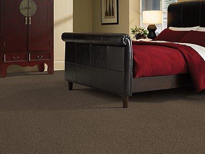 Room Scene of University Park - Carpet by Mohawk Flooring