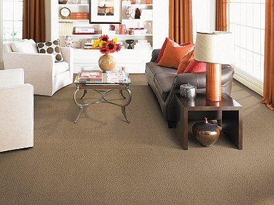 Room Scene of Zeroed In - Carpet by Mohawk Flooring