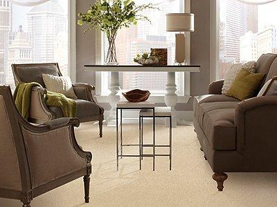 Room Scene of Refined Wisdom - Carpet by Mohawk Flooring