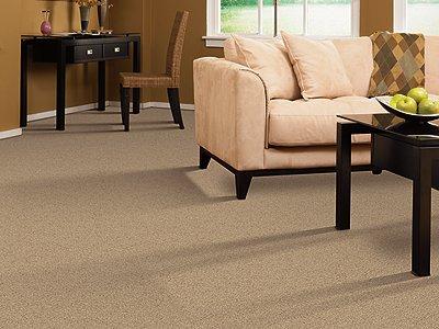 Room Scene of Lavish Design - Carpet by Mohawk Flooring