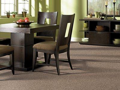 Room Scene of Coral Ridge - Carpet by Mohawk Flooring