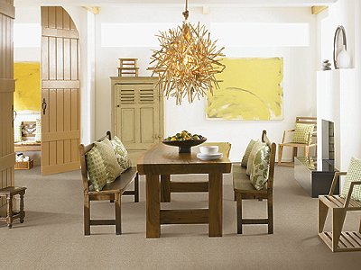 Room Scene of Endless Presence - Carpet by Mohawk Flooring