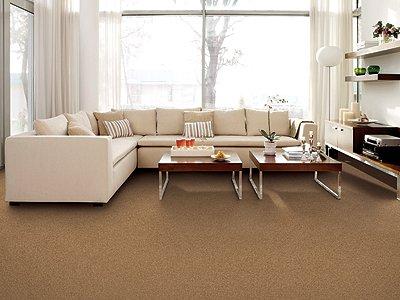 Room Scene of Vibrant Attitude - Carpet by Mohawk Flooring