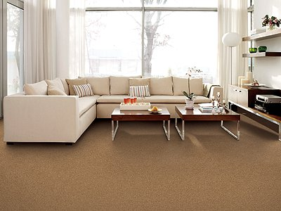 Room Scene of Cheerful View - Carpet by Mohawk Flooring