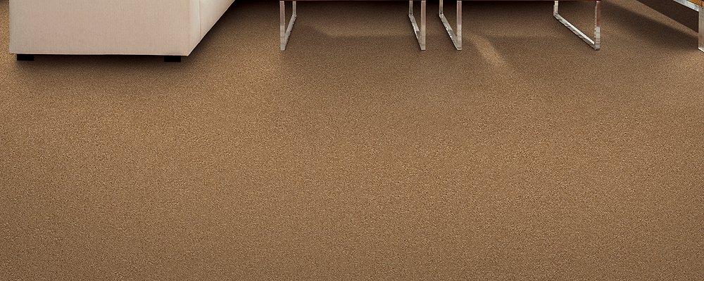 Room Scene of Delightful Cheer - Carpet by Mohawk Flooring