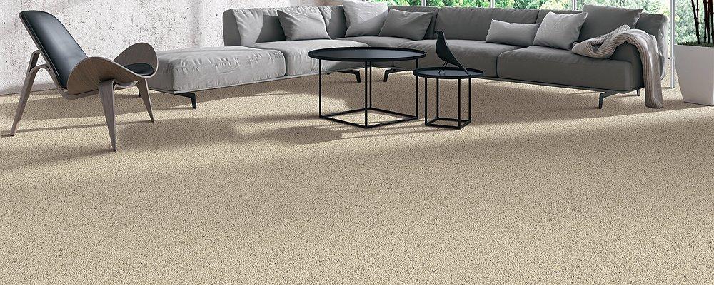 Room Scene of Sensible Style II - Carpet by Mohawk Flooring