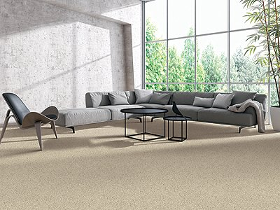 Room Scene of Vivid Character - Carpet by Mohawk Flooring