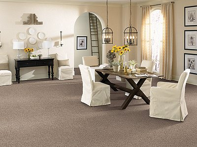 Room Scene of Sandpiper Waves Fleck - Carpet by Mohawk Flooring