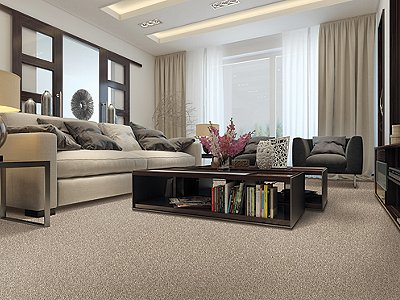 Room Scene of Tranquil Touch Fleck - Carpet by Mohawk Flooring