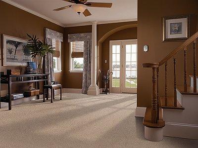Room Scene of Distinctive Setting - Carpet by Mohawk Flooring