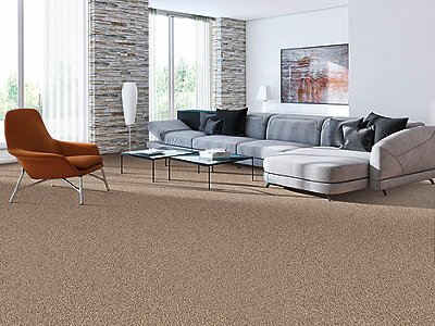 Room Scene of Colorful Moment - Carpet by Mohawk Flooring