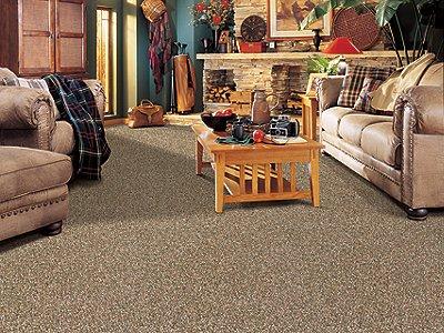 Room Scene of Baycliff - Carpet by Mohawk Flooring