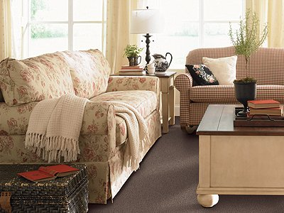 Room Scene of Common Values I - Carpet by Mohawk Flooring