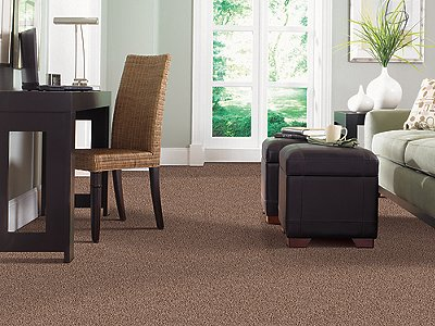 Room Scene of Foxboro Hills - Carpet by Mohawk Flooring