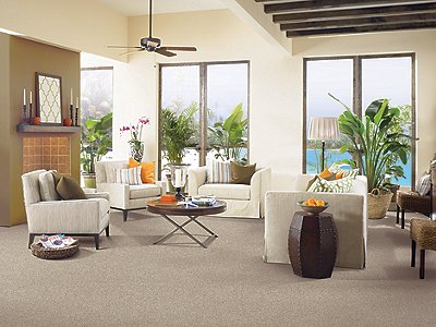 Room Scene of Tranquil View - Carpet by Mohawk Flooring
