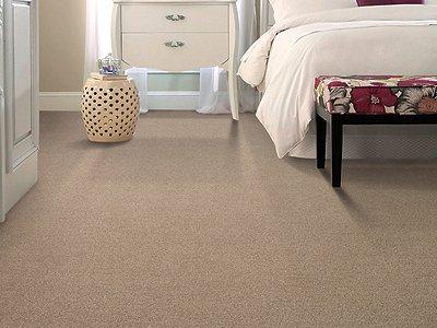 Room Scene of Tranquil Strength Tonal - Carpet by Mohawk Flooring